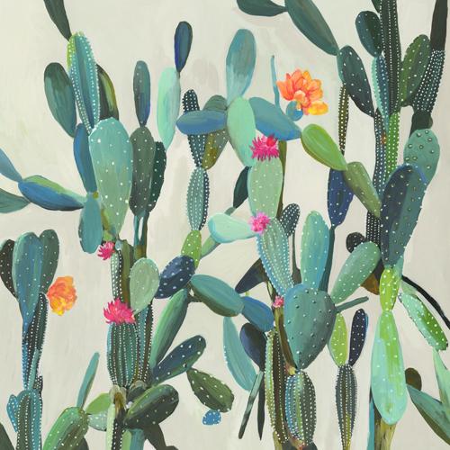 Aimee Wilson Cactus Garden