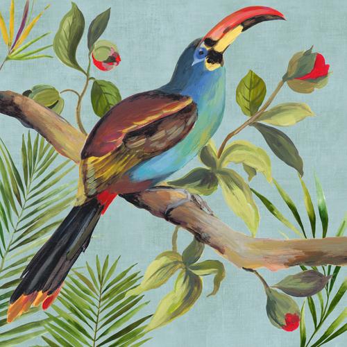 Aimee Wilson Paradise Toucan I