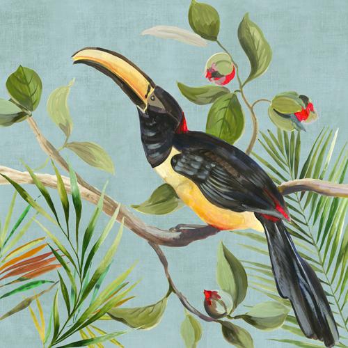 Aimee Wilson Paradise Toucan Ii