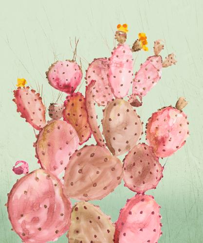 Aimee Wilson Pink Cacti