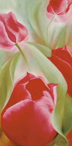 Annette Schmucker Tulpen Ii