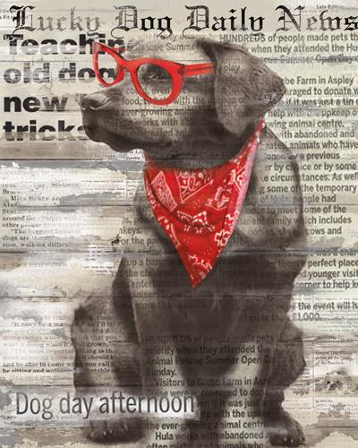 Carol Robinson Lucky Dog