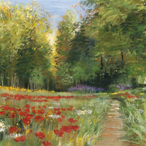 Carol Rowan Field Of Flowers