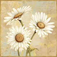 Daphne Brissonnet Beautiful Daisies I