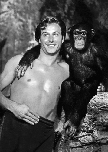 Hollywood Photo Archive Lex Barker With Cheeta