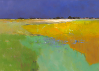 Jan Groenhart Colourful Land