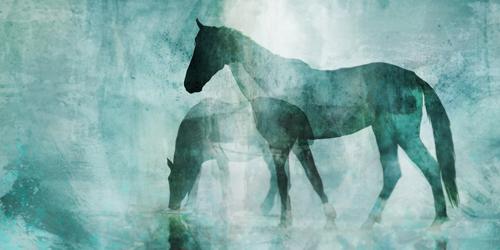 Ken Roko Dusk Horses