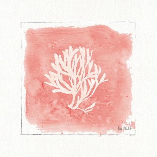 Lisa Audit Water Coral Iii