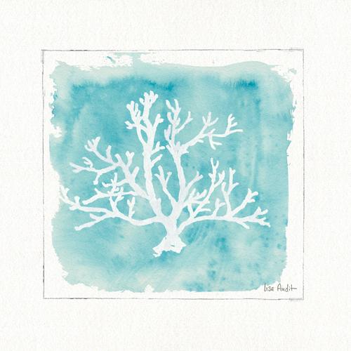 Lisa Audit Water Coral V