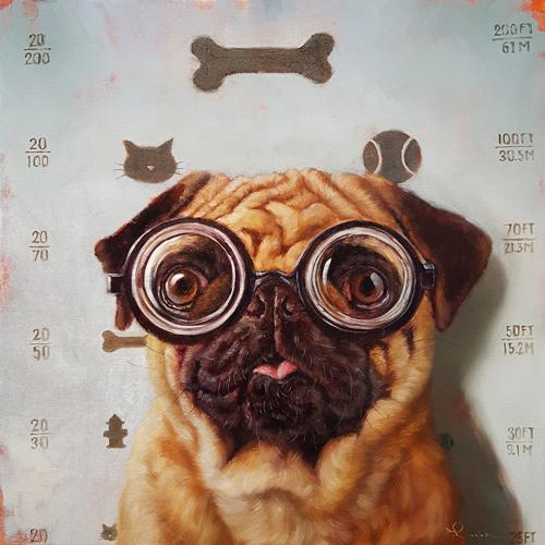 Lucia Heffernan Canine Eye Exam