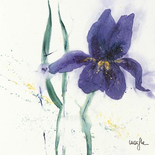 Marthe Iris Ii