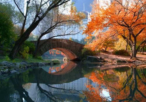 Michael Chen Gapstow Bridge Fall