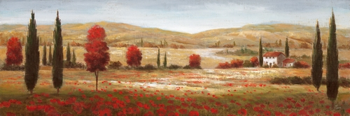 Nan Tuscan Poppies I