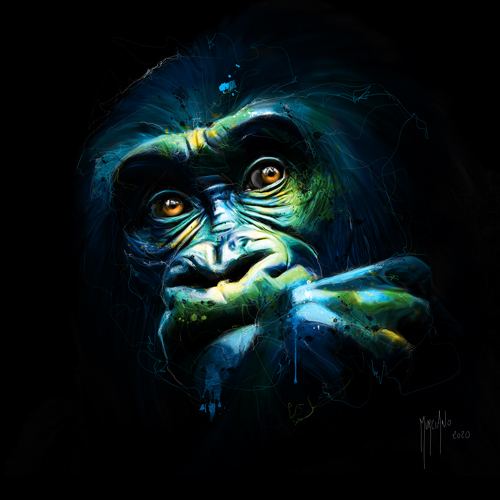 Patrice Murciano Black Kong