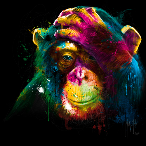 Patrice Murciano The Darwin S Preoccupations