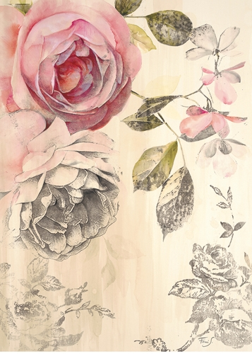 Stefania Ferri Ethereal Roses 2