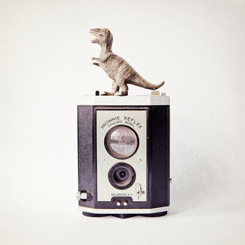 Susannah Tucker Photography T Rex Vintage Camera