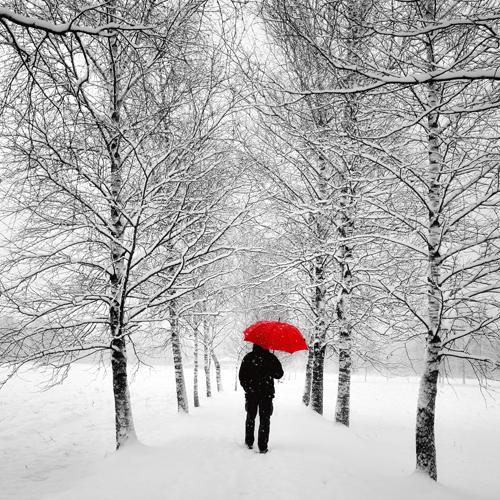 Uwe Steger Der Einsame Weg