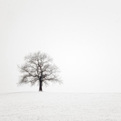 Uwe Steger Wintersturm Ii